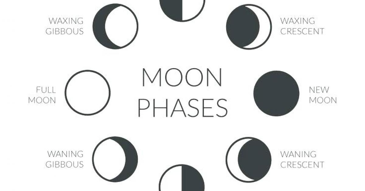 SUMMER EXPERIENCE - ages 6-12 - OREO MOON PHASES - HAUGHTON BRANCH